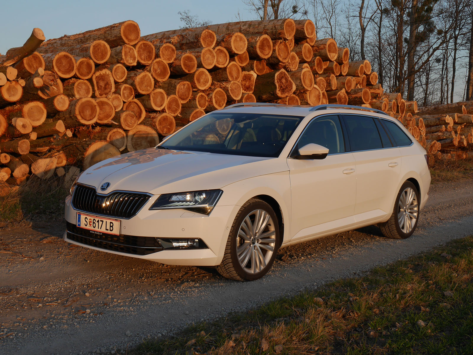 skoda superb combi 4 4 style tdi dsg testbericht. Black Bedroom Furniture Sets. Home Design Ideas