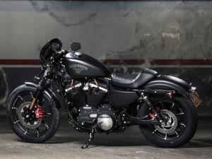 (c) Harley-Davidson